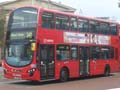 Arriva London North DW311 on Route 243