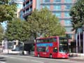 Travel London 9491 on Route 344